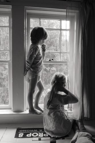 windowwatchers