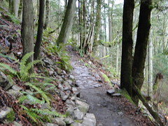 Lower Chirico trail.