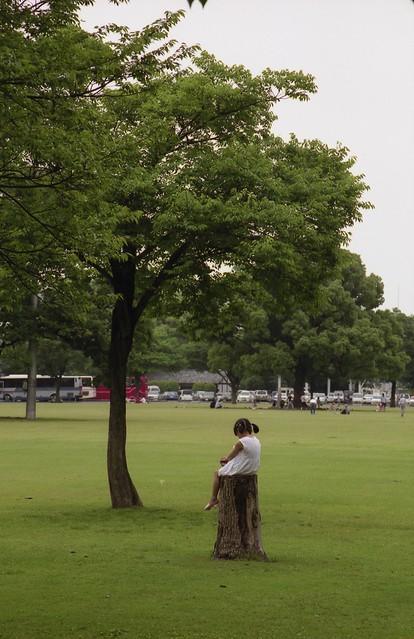 少女と1本の木のフリー写真素材