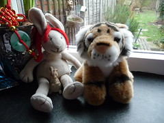 Tiger says goodbye to rabbit 047
