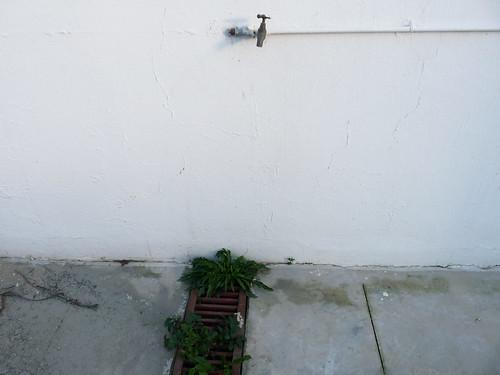 Detalle sumidero patio