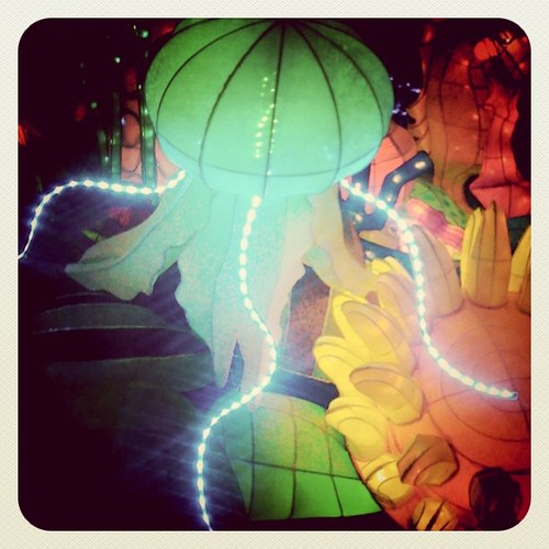 Jelly fish @ Lunar festival