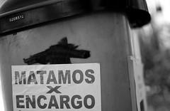 servicios de hoy (i-nacho) Tags: blackandwhite bw byn blancoynegro argentina buenosaires nikon noiretblanc conejo nikkor aonuevo chino belgrano barriochino 2011 d90 4709 inacho afsdxnikkor35mmf18g