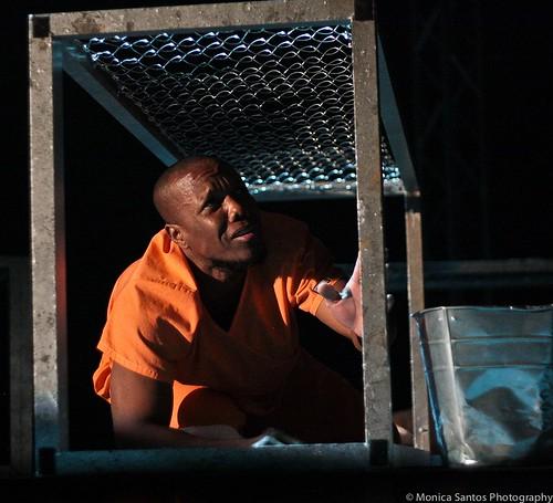 Guantanamo What Now? dada