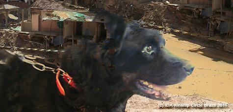 Kinship Circle - 2011-02-18 - Brazil Mudslides 04