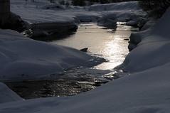 """Fluss """"Lonza"""" bei Gletscherstafel (Ruedi_F) Tags: ltschental langgletscher fafleralp ltschenlcke"""