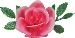 pink rose topper by acupcakery