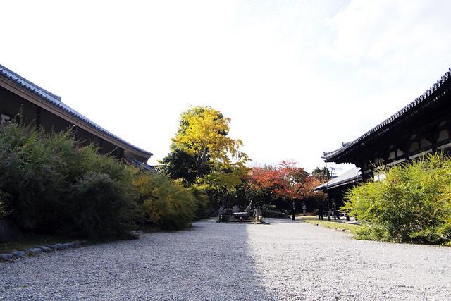 20101116_134937_元興寺