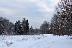 stritz-4097.jpg (jstritz) Tags: park winter fhsp