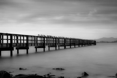 Candlestick Point Pier (Jim Boud) Tags: sanfrancisco longexposure travel blackandwhite bw white seascape black mountains clouds lens landscape grey mono bay pier is rocks moody cove seagull gray dramatic rocky pacificocean bayarea usm drama waterscape artisticphotography desaturate southsanfrancisco candlestickpark tiffen cokin ndfilter candlestickpoint smoothwater neutraldensity jimboud canoneos60d jamesboud canon1585mm