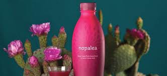 Nopalea Trivita SonoranBloom Wellness Challenge Sonoran Bloom Cactus Drink Review Testimonials pic30