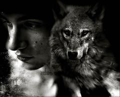 Lone Wolf (Laura Galley) Tags: boy wild portrait blackandwhite man blur nature animal dangerous wolf darkness transformation searchthebest young monotone textures teenager lonely spiritual introspection trueself darknature ofhiswolfishnature iwantedtorecallthegreatgermannovelsteppenwolfbyhermannhesse wolfdeviantart