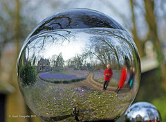 Mirror of the seasons (Greet N.) Tags: art garden mirror spring spiegel kunst tuin lente drente crocussen