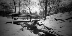 Winter memories (Varga Zoltan Adam) Tags: longexposure bridge winter blackandwhite bw snow 120 film mediumformat diy pinhole homemade cameraobscura estenopeica wintermemories stnop 6x12 lyukkamera legocamera shanghaigp3100 diypfav