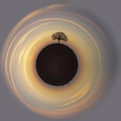 La Terre nourricière (photosenvrac) Tags: photo terre arbre miniworld miniplanete