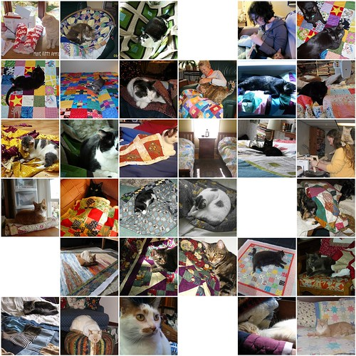 CATS WHO LOVE QUILTS 1 by KoolBeenz