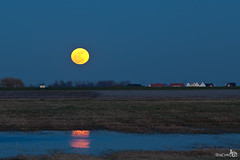 Moonrise 'Super Moon' (BraCom (Bram)) Tags: houses moon reflection landscape large explore moonrise bluehour soe landschap huizen groot maan spiegeling blauweuurtje goldstaraward maanopkomst bracom mygearandme