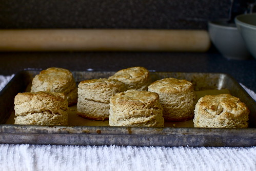 oat and maple syrup scones | smitten kitchen