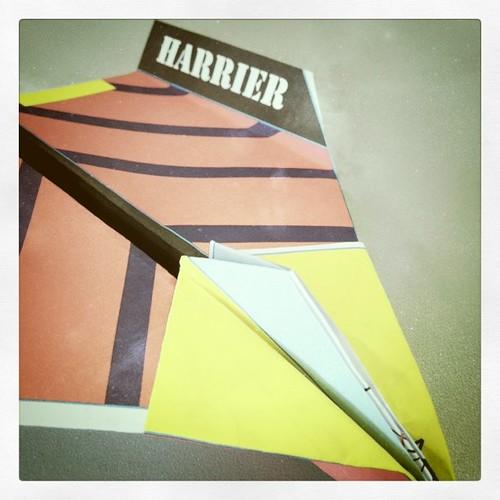 Harrier, 06.04.11