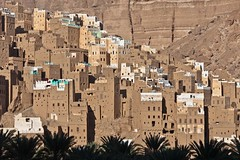 village of mud-brick houses in the wadi doan, tribal region of Hadramawt, northeast Yemen (anthony pappone photography) Tags: pictures travel architecture digital canon landscape photography photographer image photos country picture culture arab valley arabia land yemen wadi paesaggio deserto reportage photograher persiangulf arabs arabo doan yemeni phototravel hadramaut yaman shibam medioriente arabie hadramawt jemen sayun arabiafelix arabieheureuse حضرموت اليمن arabianpeninsula wadidoan hadramout hadramaout يمني shebam 也門 wadihadramawt йемен wadidawan wadihadramout almukallah yemenpicture yemenpictures touraroundtheworld यमन mark5dii mediorient hadramuot 哈德拉毛 ハドラマウト gimejun1213