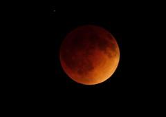 Lunar Eclipse April 2014 #76 (Az Skies Photography) Tags: arizona sky moon rio night canon skyscape eos rebel eclipse blood 14 15 az luna rico april nightsky lunar lunareclipse bloodmoon 2014 arizonasky riorico rioricoaz 41414 t2i canoneosrebelt2i eosrebelt2i arizonaskyscape april2014 4142014 4152014 april142014 lunareclipse2014 lunareclipseapril2014 april152015