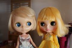 Sunny & Svea (Dolly Aves) Tags: blythe blythedoll kenner sunny