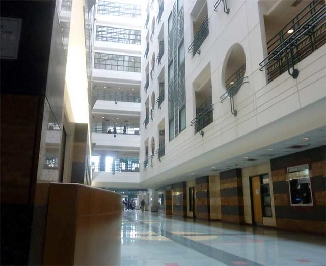 P1070347-2011-01-26-Grady-Hospital-Atrium