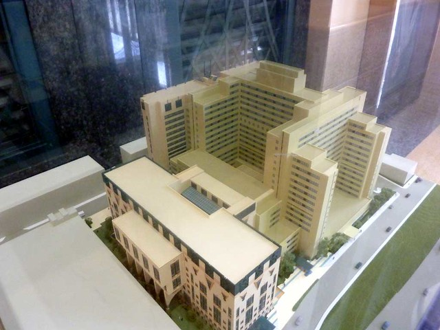 P1070343-2011-01-26-Grady-Hospital-Model