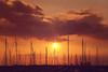 Seascape with sea invisible (y2-hiro) Tags: sunset sea sky sun seascape silhouette clouds evening nikon 2470mm d3s