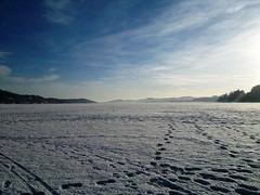 Saltwater Ice Fishing in Norway's Fjords #9