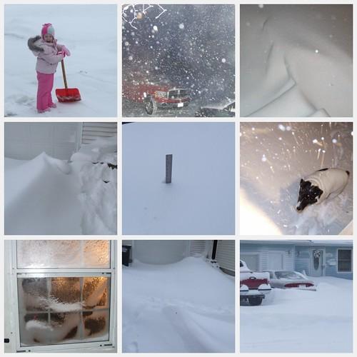 blizzard 2011