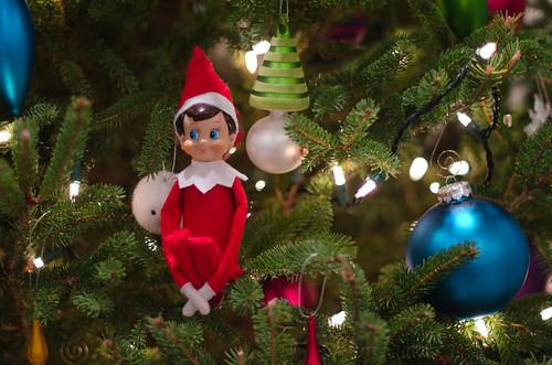 holiday2010-tree-4