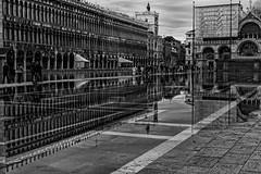 Venice in Rain (consigliere_tom) Tags: leica venice water rain square flood piazza venedig nokton sanmarco m9 veniceitalybw consiglieretom