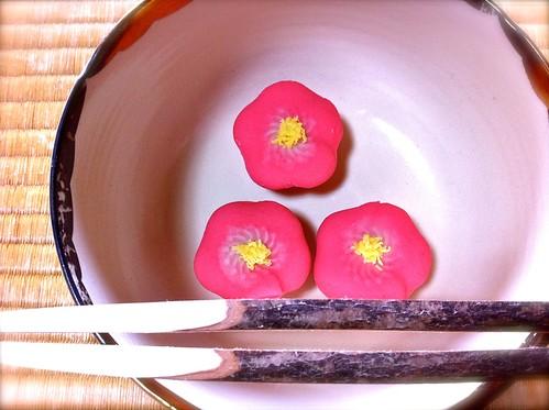 """今日のお菓子 No.28 – 和菓子""""紅梅"""""""