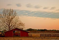 Barn (skippys1229) Tags: trees clouds barn rural sunrise canon dawn farm 1855mm marioncounty ocalafl ocalaflorida rebelt1i canonrebelt1i foreranch westocala