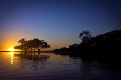 Morning has broken (Aristocrats-hat) Tags: trees sun reflection beach water silhouette sunrise clear ripples rise tranquil warming mesmerizing nudgee