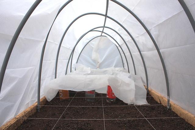 Warm crops in hoop houses? 5465113741_df4d2b623c_z