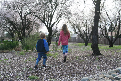 R and Asher among the Almond Trees