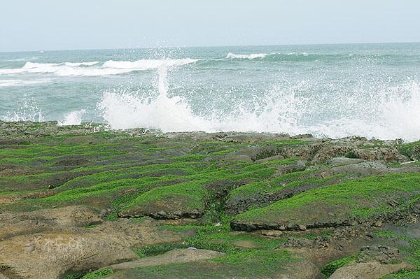 拍打岸邊的海浪