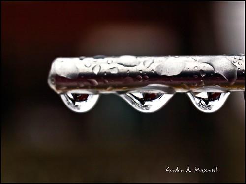 3 Drops 1