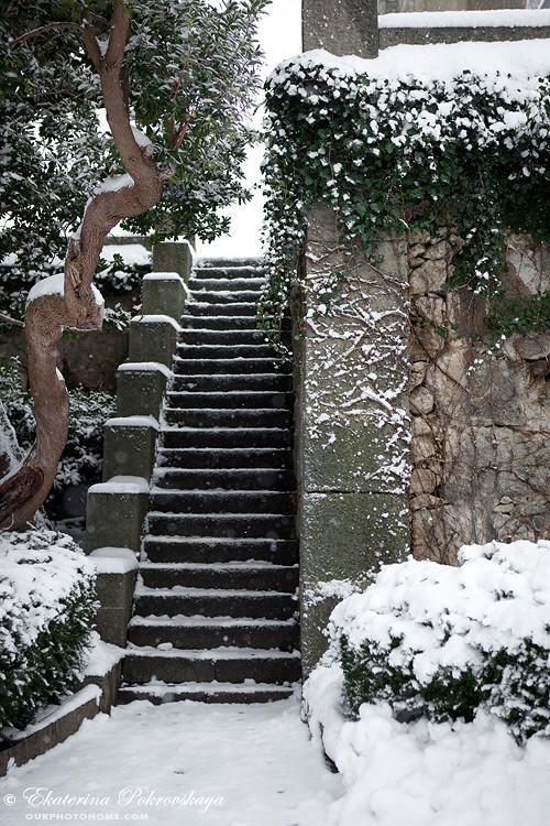 Voroncov_palace__winter_24