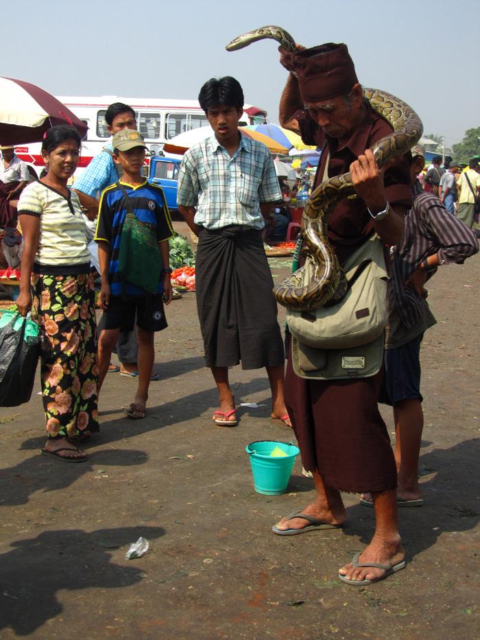 Snake Man, Myanmar