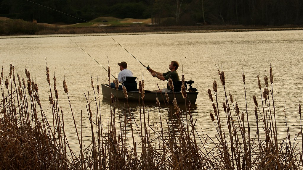 The world 39 s best photos by cameragirlusa flickr hive mind for Lake acworth fishing