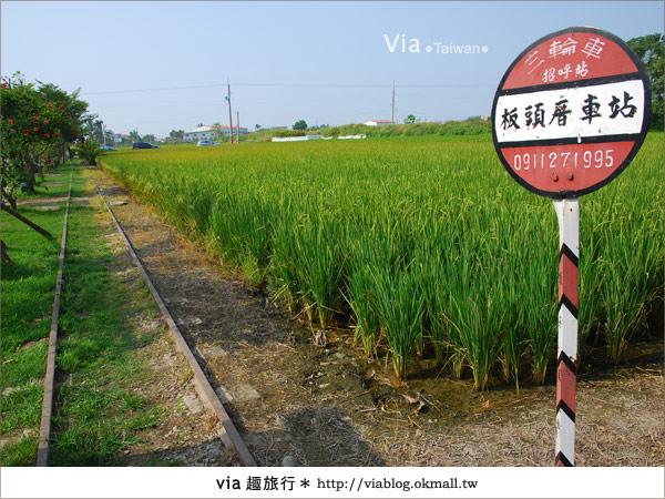 【嘉義景點】新港板頭村交趾剪粘藝術村~到處都是有趣的拍照景點!11