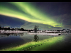 Midnight Dancer - Aurora at ingvellir, Iceland (orvaratli) Tags: winter sky cloud lake cold reflection tree weather landscape star iceland nationalpark space astro arctic aurora solarwind unescoworldheritage ingvellir magnetic ingvallavatn solarstorm borealisnorthernlights
