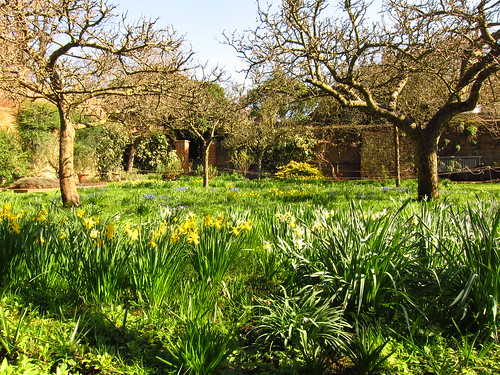 Spring Meadow at Fenton House