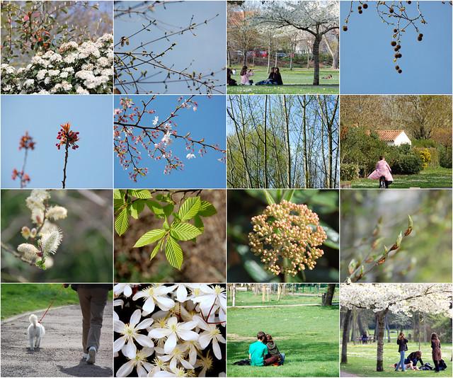 Primavera. Spring