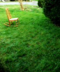 Lawn rocker, green, Broadview, Seattle, Washington, USA (Wonderlane) Tags: seattle usa tree green washington spring lawn rocker lush broadview 6369 childsrocker