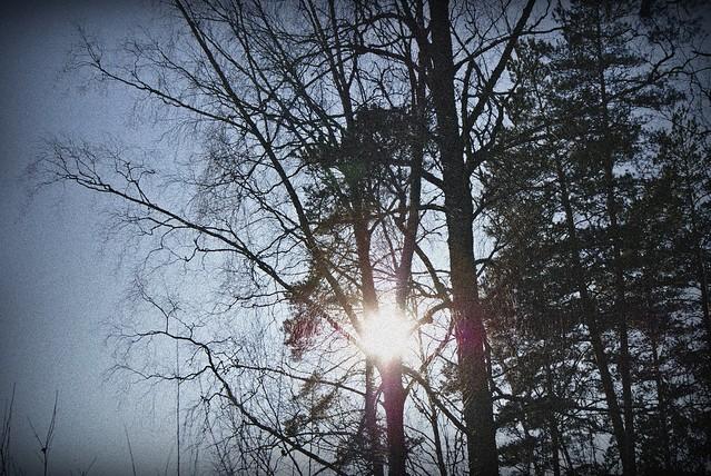 kevät 013