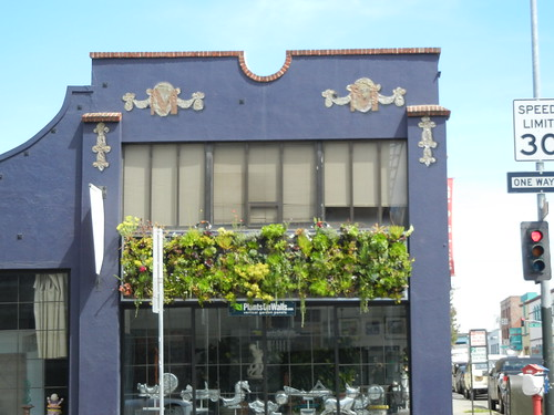 Plants on Walls 2367